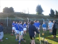South_Leinster_Hurling_Final_2012_050