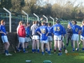 South_Leinster_Hurling_Final_2012_056