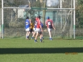 South_Leinster_Hurling_Final_2012_066