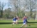South_Leinster_Hurling_Final_2012_077